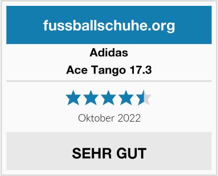 Adidas Ace Tango 17.3 Test
