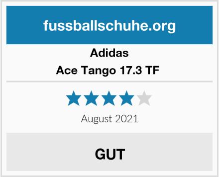 Adidas Ace Tango 17.3 TF  Test