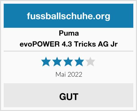 Puma evoPOWER 4.3 Tricks AG Jr Test