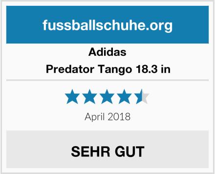 Adidas Predator Tango 18.3 in Test