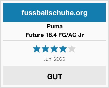 Puma Future 18.4 FG/AG Jr Test